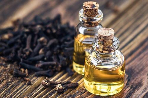 丁香植物精油的作用